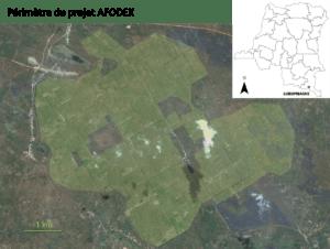 1_perimetre_afodek_newsletter_pp_231116