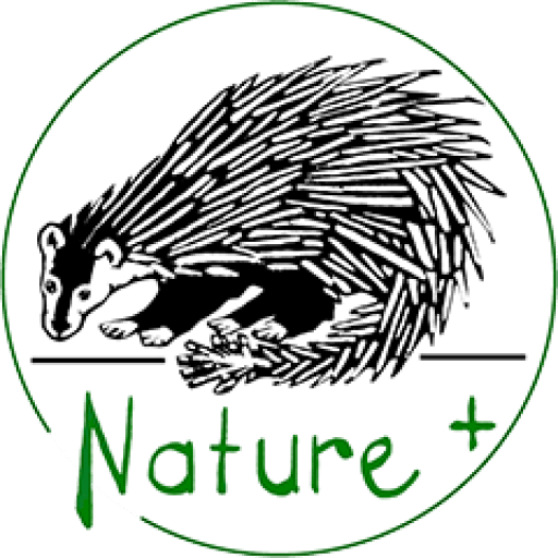 Nature +